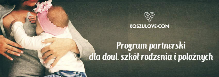 program partnerski banner